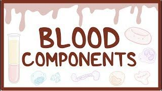 Video poster for Blood components