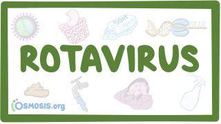 Video poster for Rotavirus