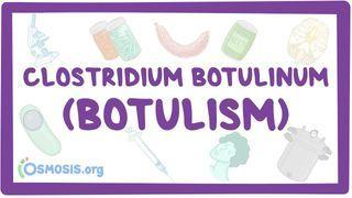 Video poster for Clostridium botulinum (Botulism)