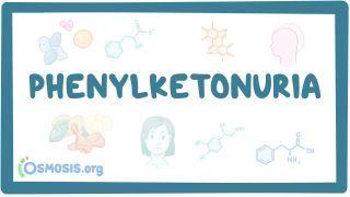Video poster for Phenylketonuria