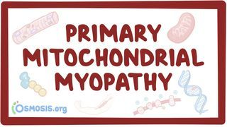 Video poster for Mitochondrial myopathy