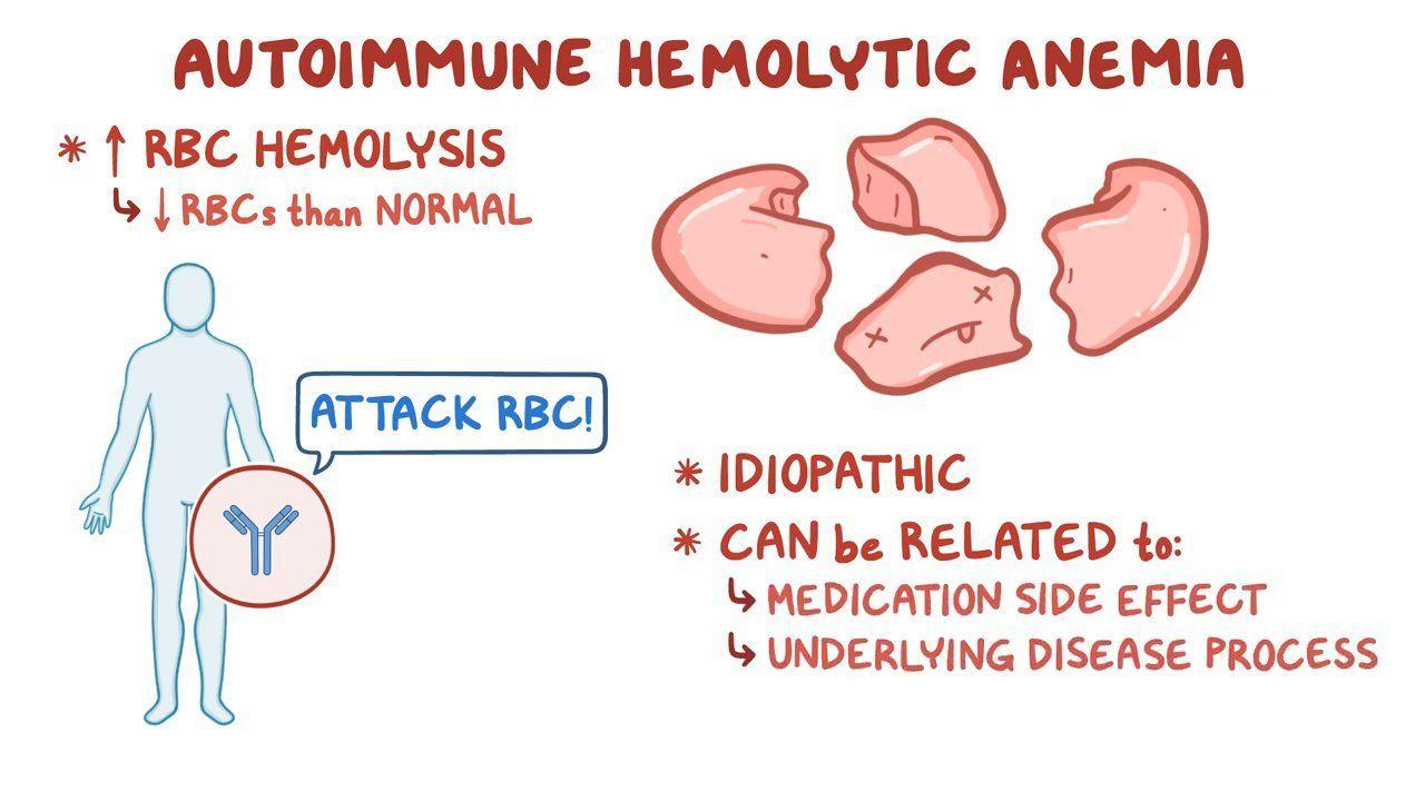 Autoimmune hemolytic anemia   Osmosis