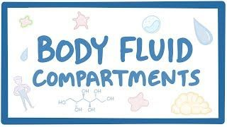 Video poster for Body fluid compartments