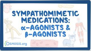 Video poster for Sympathomimetic medications