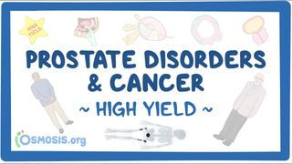 Video poster for High Yield: Prostate disorders and cancer