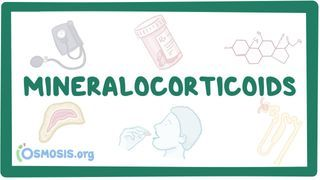 Video poster for Mineralocorticoids and mineralocorticoid antagonists