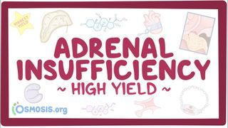 Video poster for High Yield: Adrenal insufficiency