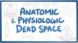Video poster for Anatomic and physiologic dead space
