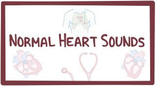 Video poster for Normal heart sounds