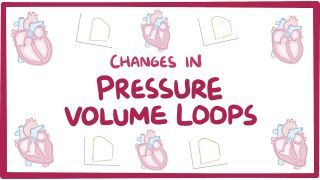Video poster for Changes in pressure-volume loops