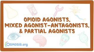 Video poster for Opioid agonists, mixed agonist-antagonists, and partial agonists