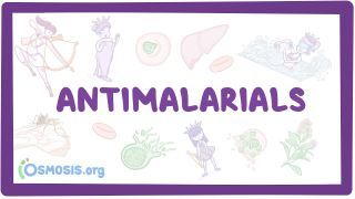 Video poster for Antimalarials