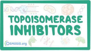 Video poster for Topoisomerase inhibitors
