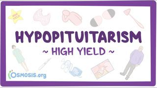 Video poster for High Yield: Hypopituitarism