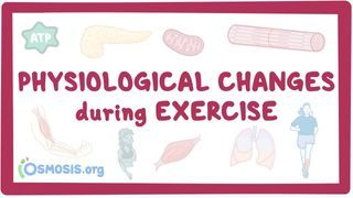 Video poster for Physiological changes during exercise