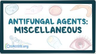 Video poster for Miscellaneous antifungal medications