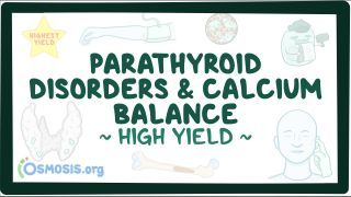 Video poster for High Yield: Parathyroid disorders and calcium imbalance