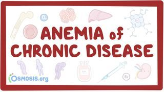 Video poster for Anemia of chronic disease