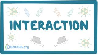 Video poster for Interaction
