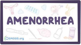 Video poster for Amenorrhea