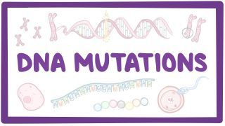 Video poster for DNA mutations