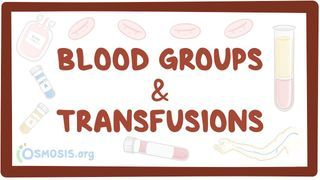 Video poster for Blood groups and transfusions