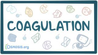 Video poster for Coagulation (secondary hemostasis)