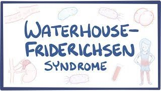 Video poster for Waterhouse-Friderichsen syndrome