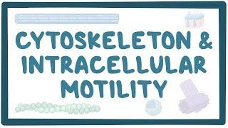 Video poster for Cytoskeleton and intracellular motility