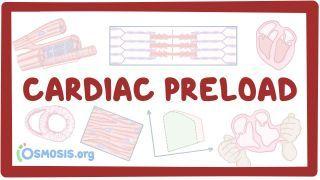 Video poster for Cardiac preload