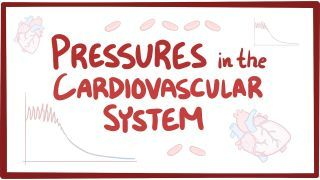 Video poster for Pressures in the cardiovascular system