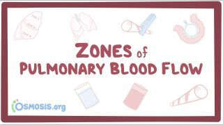 Video poster for Zones of pulmonary blood flow