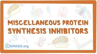 Video poster for Miscellaneous protein synthesis inhibitors