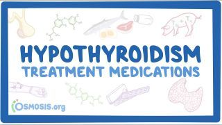 Video poster for Hypothyroidism medications