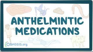 Video poster for Anthelmintic medications
