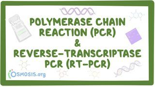 Video poster for Polymerase chain reaction (PCR) and reverse-transcriptase PCR (RT-PCR)