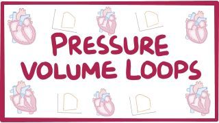 Video poster for Pressure-volume loops