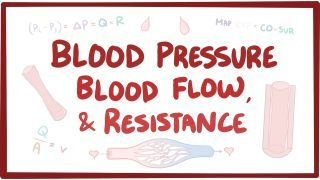 Blood Pressure Blood Flow And Resistance