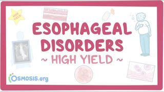 Video poster for High Yield: Esophageal disorders