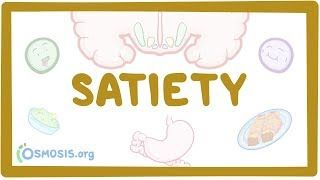 Video poster for Satiety