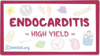 Video poster for High Yield: Endocarditis
