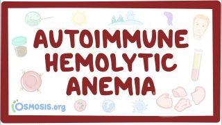 Video poster for Autoimmune hemolytic anemia