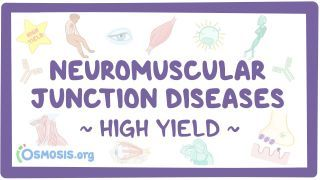 Video poster for High Yield: Neuromuscular junction diseases