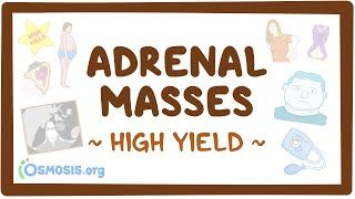 Video poster for High Yield: Adrenal masses