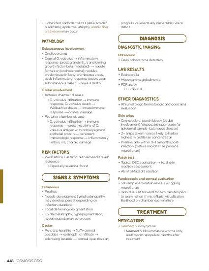 gőztisztító a pinworms értékeléshez)