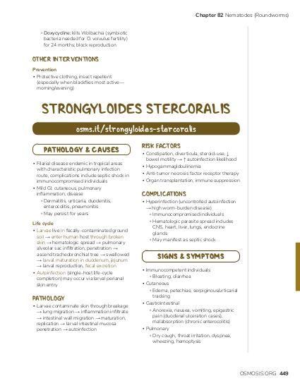 enterobius vermicularis usmle)