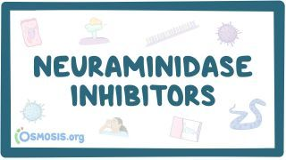 Video poster for Neuraminidase inhibitors