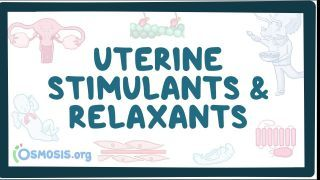 Video poster for Uterine stimulants and relaxants