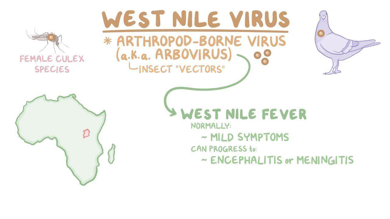 West Nile Virus Osmosis
