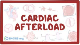 Video poster for Cardiac afterload